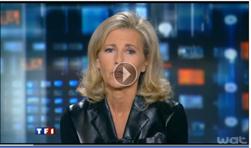 JT-TF1-9-janvier-2011-